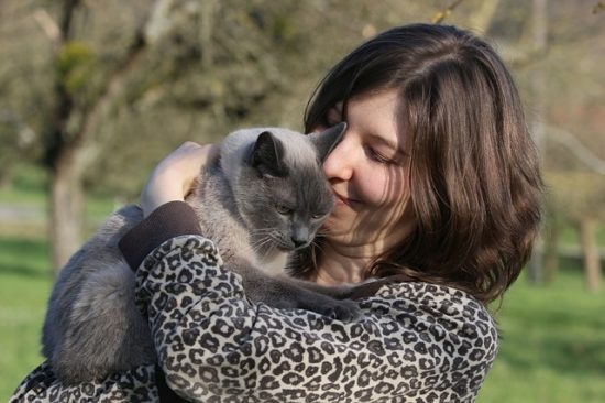 chat en pleine santé