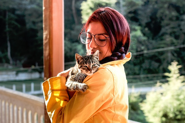chat pris dans les bras