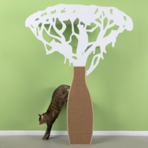 véritable arbre a chat