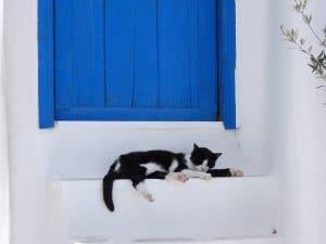 chatière magnétique et électronique