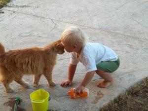 chat face enfant