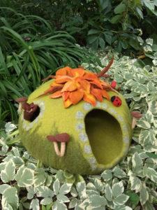 grotte chat champignon verdure plantes