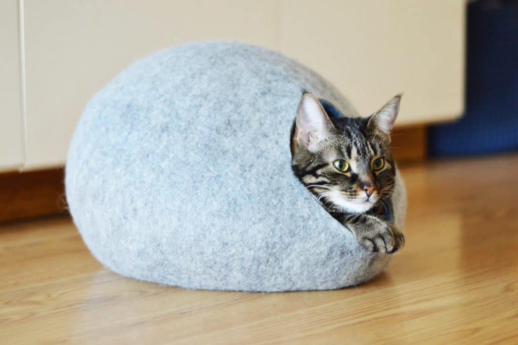 grotte chat classique allongée