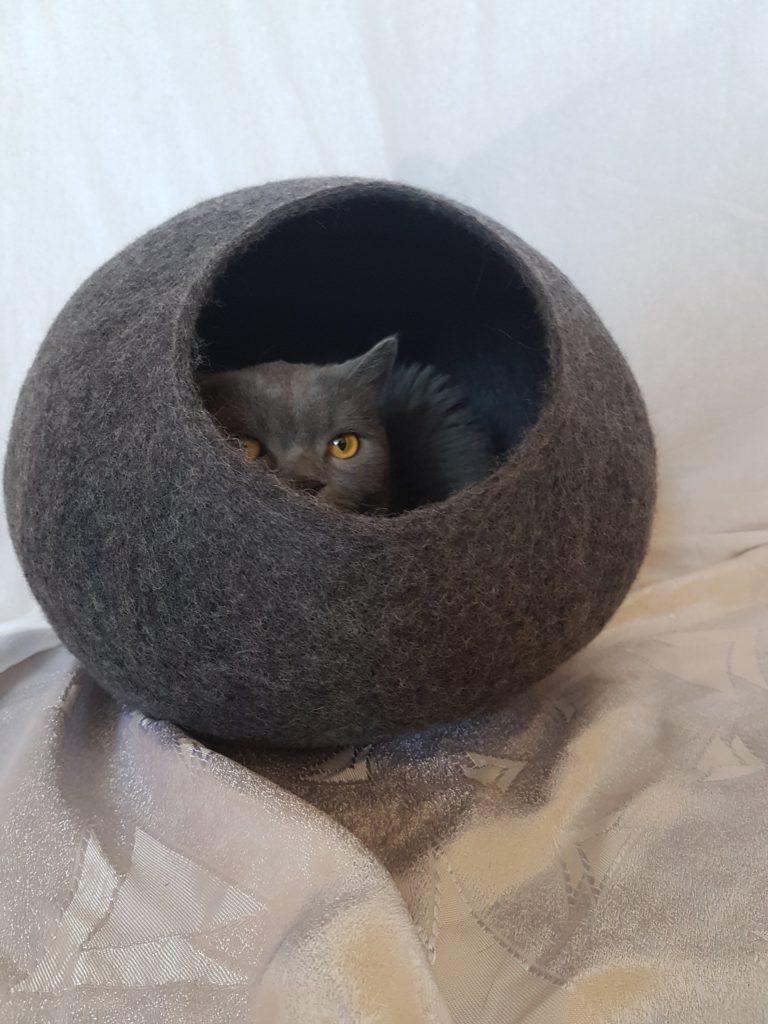 grotte chat grande ouverture