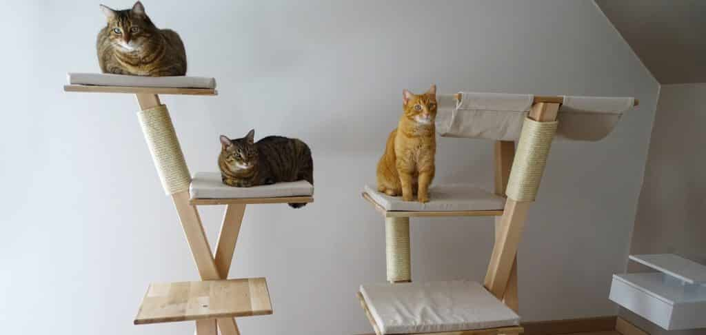 chat sur arbre en bois artisanat france