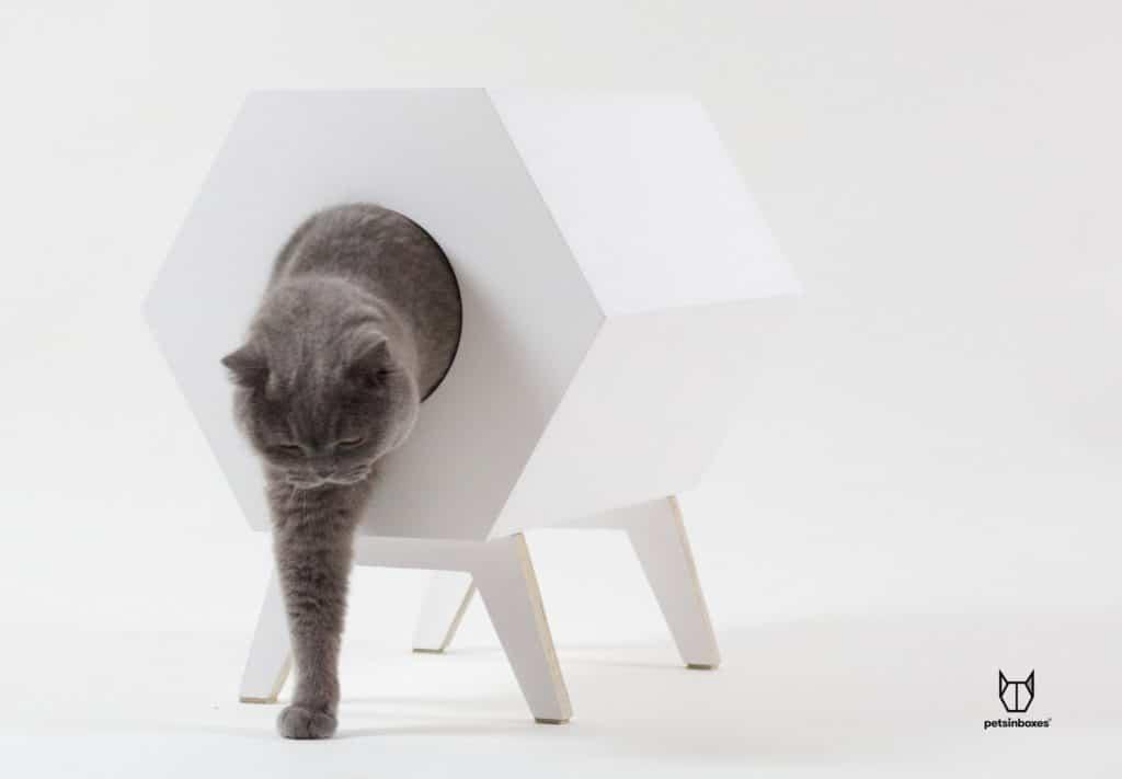 niche chat géométrique bois