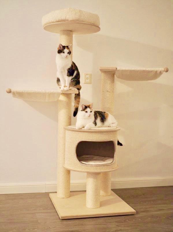 arbre a chat bois clair haut niche