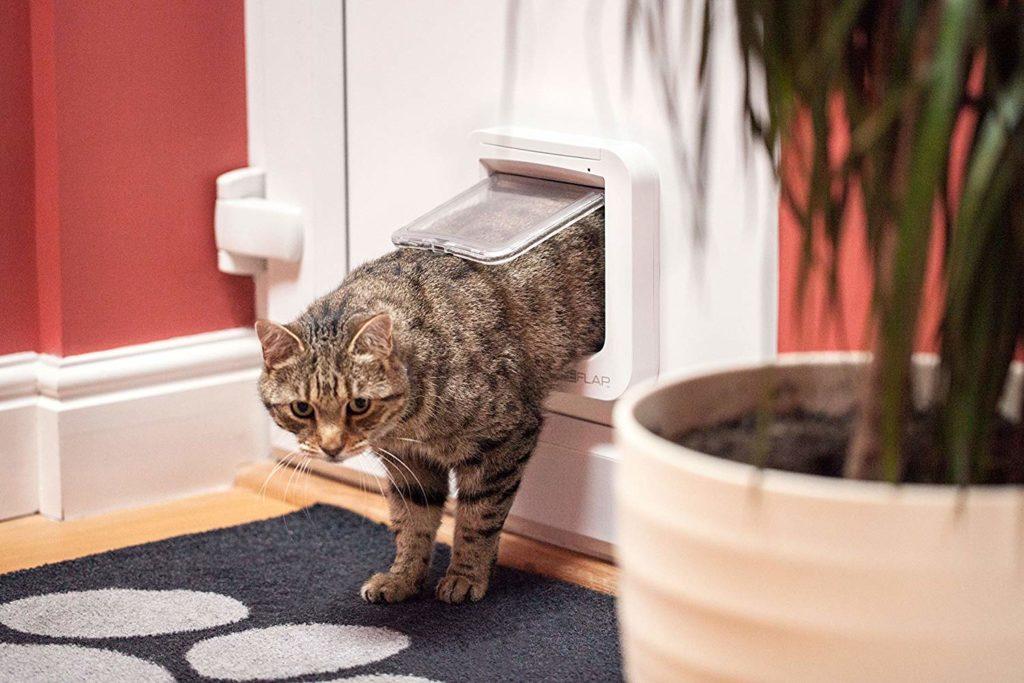chatière sureflap chat passage