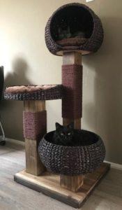 arbre à chat jacinthe cocons ronds bois massif