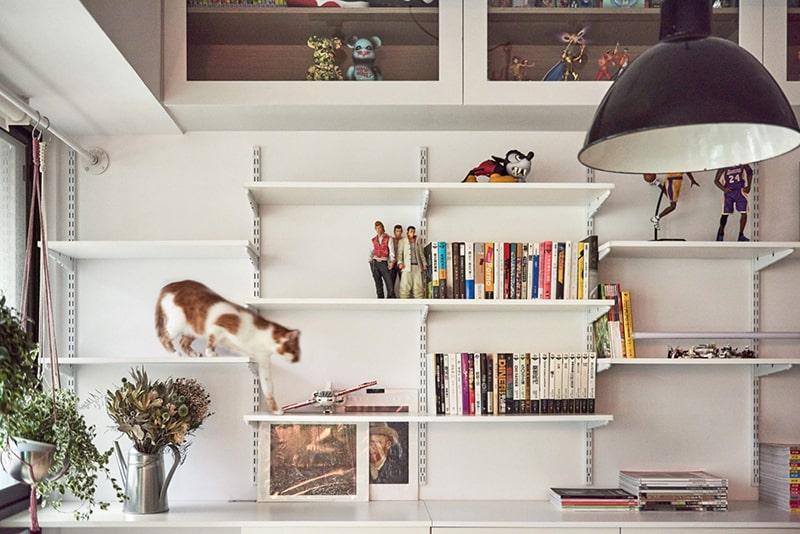 plan de travail bibliotheque chat