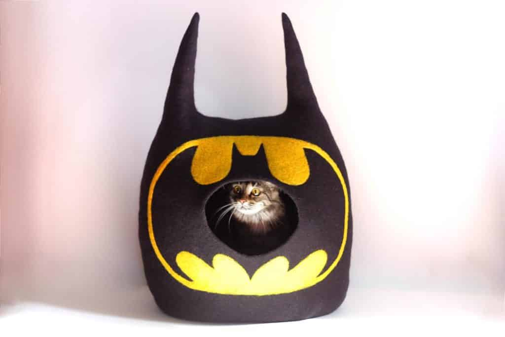 grotte chat batman