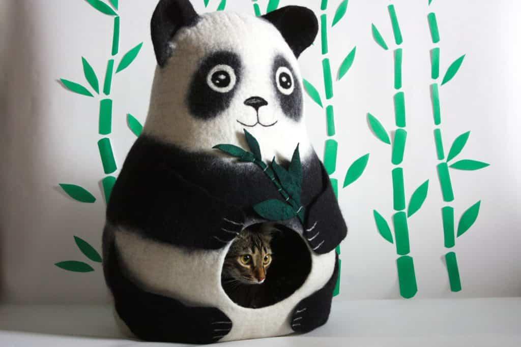 grotte chat panda