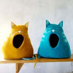 grotte chat qui baille
