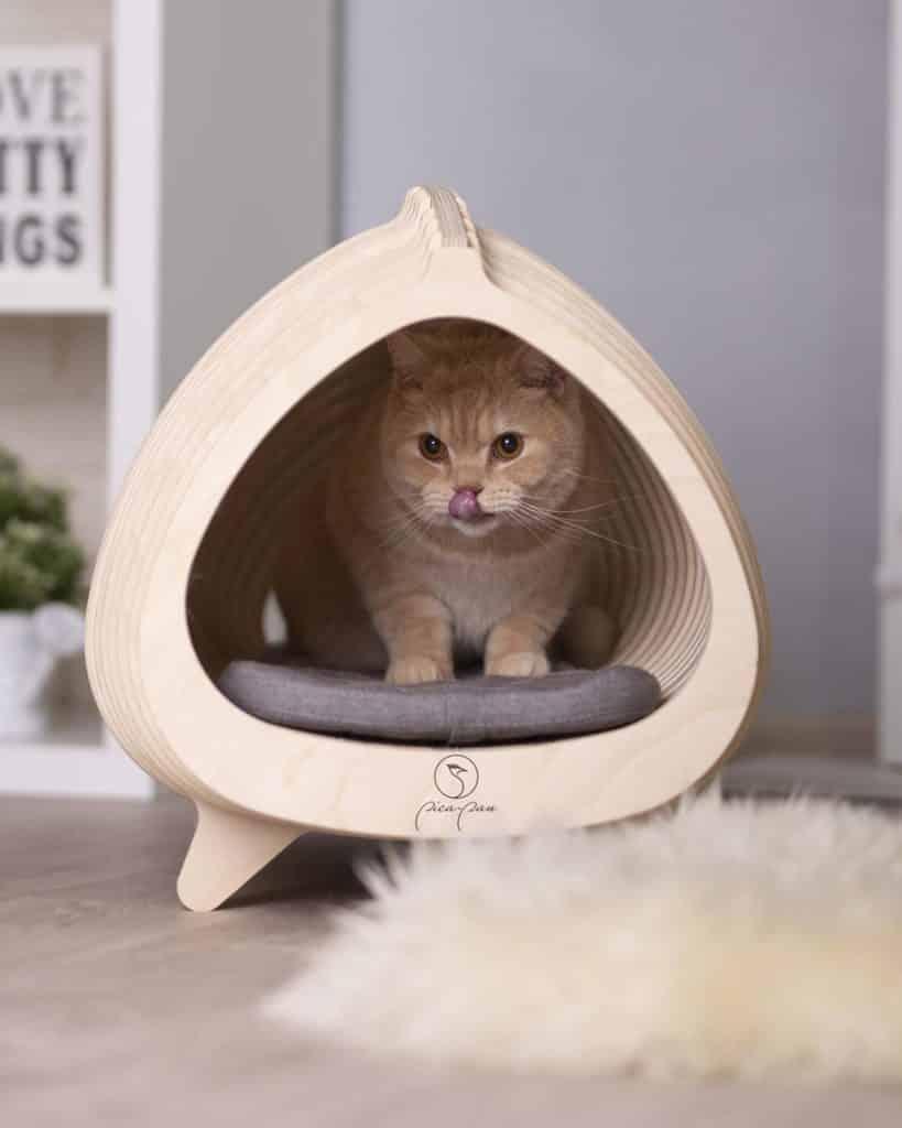niche chat ovale bois bouleau