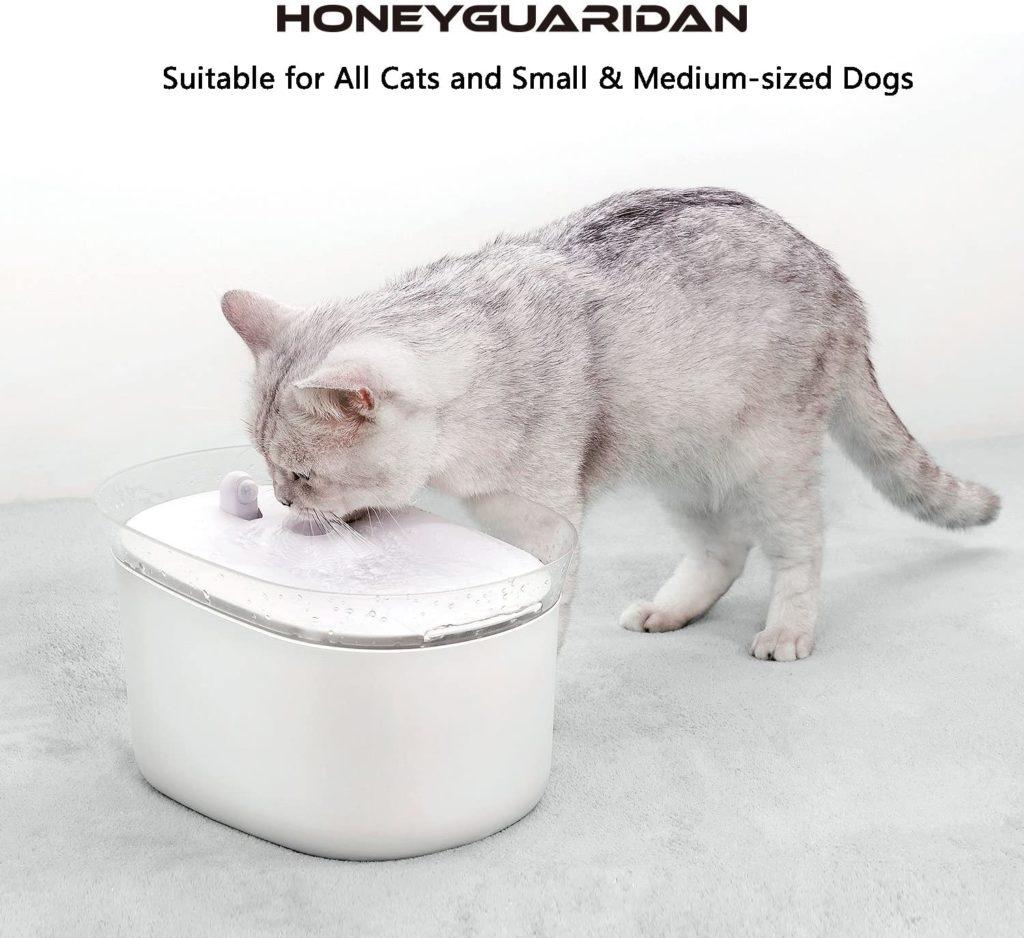 fontaine-honeyguaridan-chat