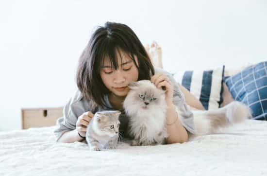femme-allongee-deux-chat-lit