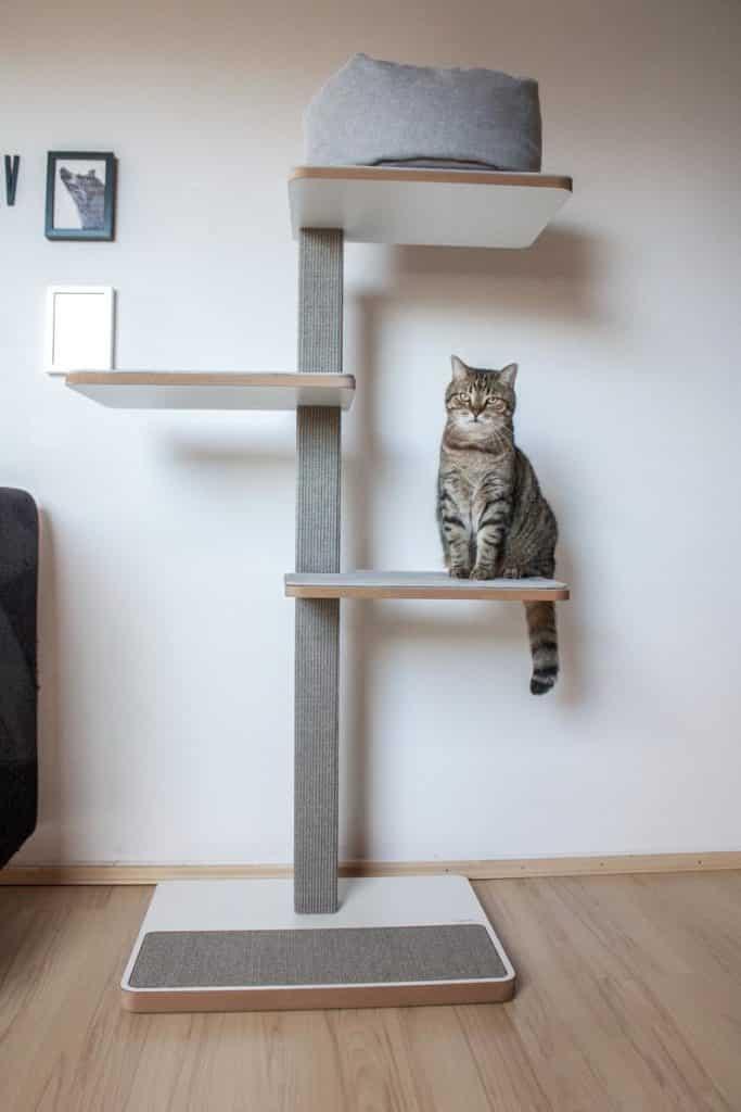 arbre a chat design luxe allemand plateformes