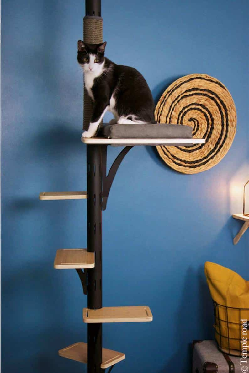 arbre a chat design luxe metal bois