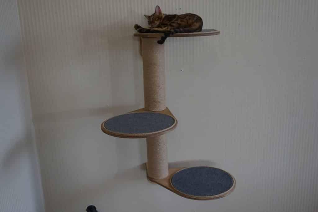 arbre a chat mural design 3 niveaux circulaires