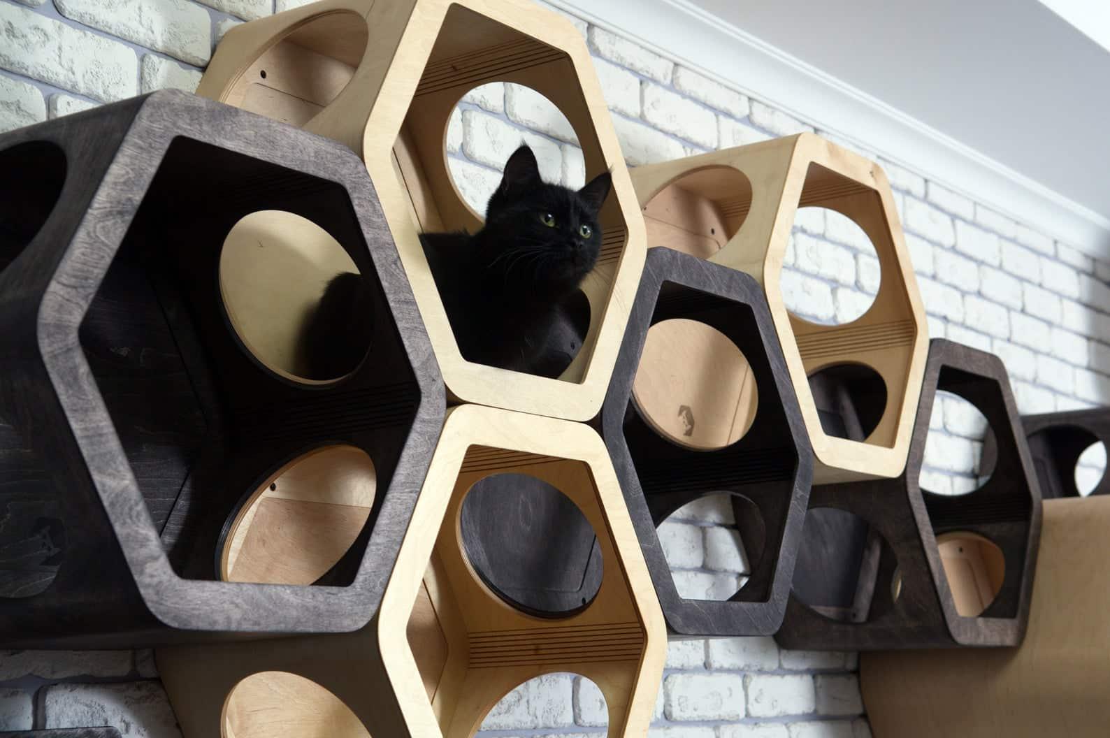 arbre a chat mural design hexagone bloc
