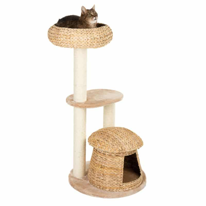 arbre a chat design bananier niche cocon