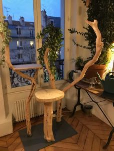 arbre a chat design luxe feuillage