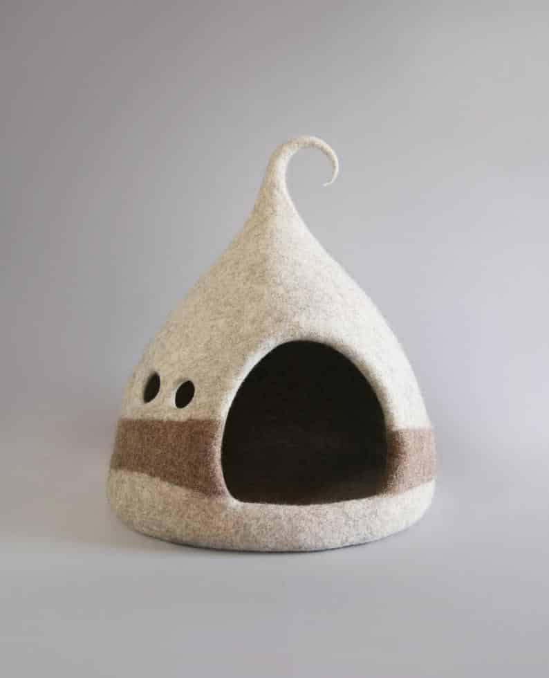 grotte chat fenetres