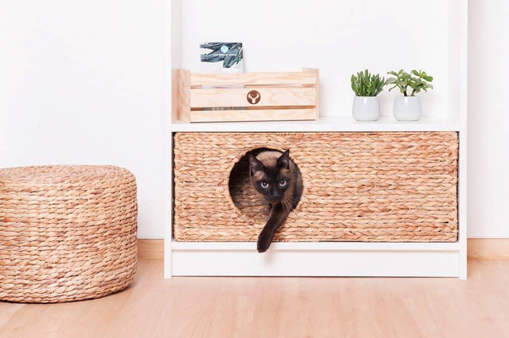 panier design pour chat a integrer