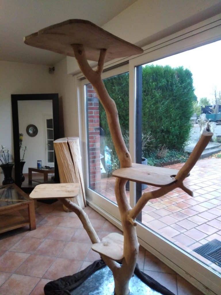 arbre a chat 2 metres hauteur