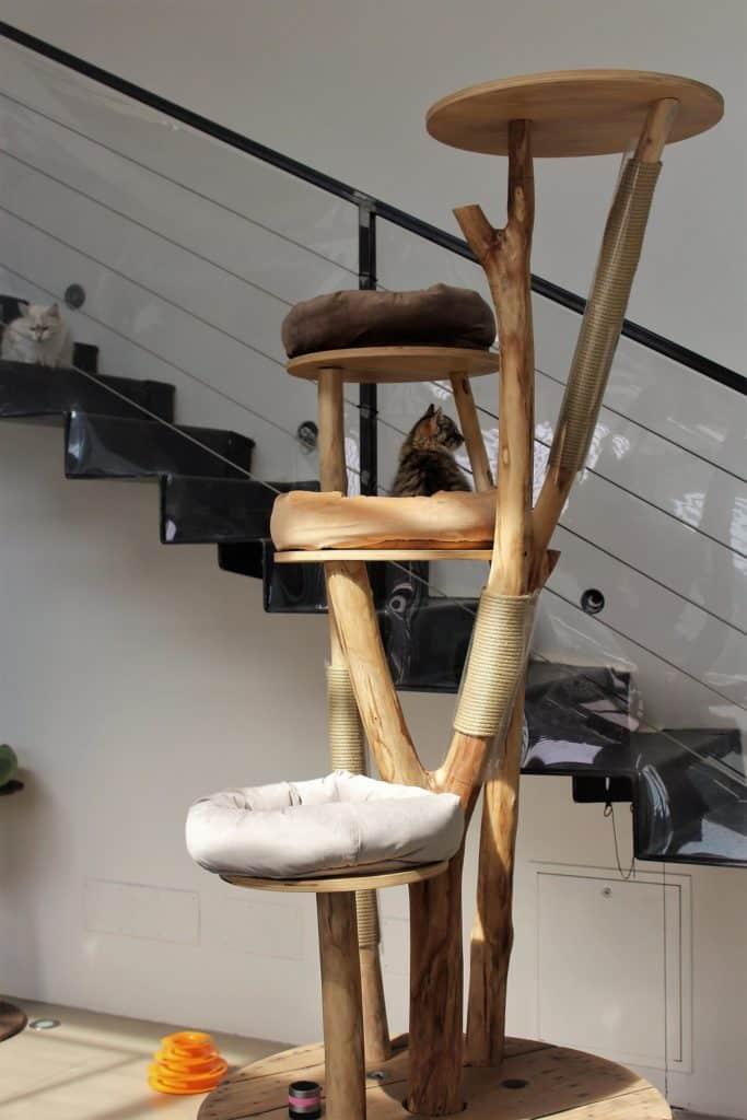 arbre a chat haut design 2m60