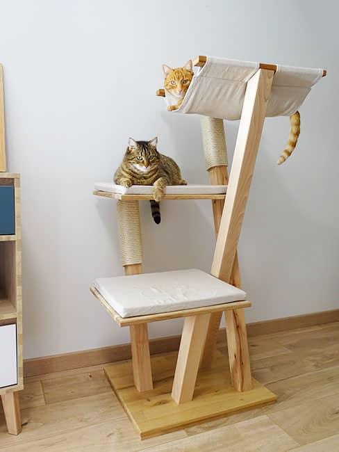 boutique chat perche