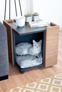 mobilier chat salon