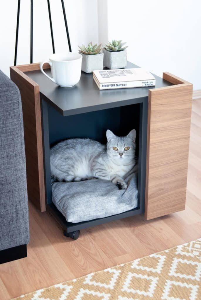 mobilier chat salon