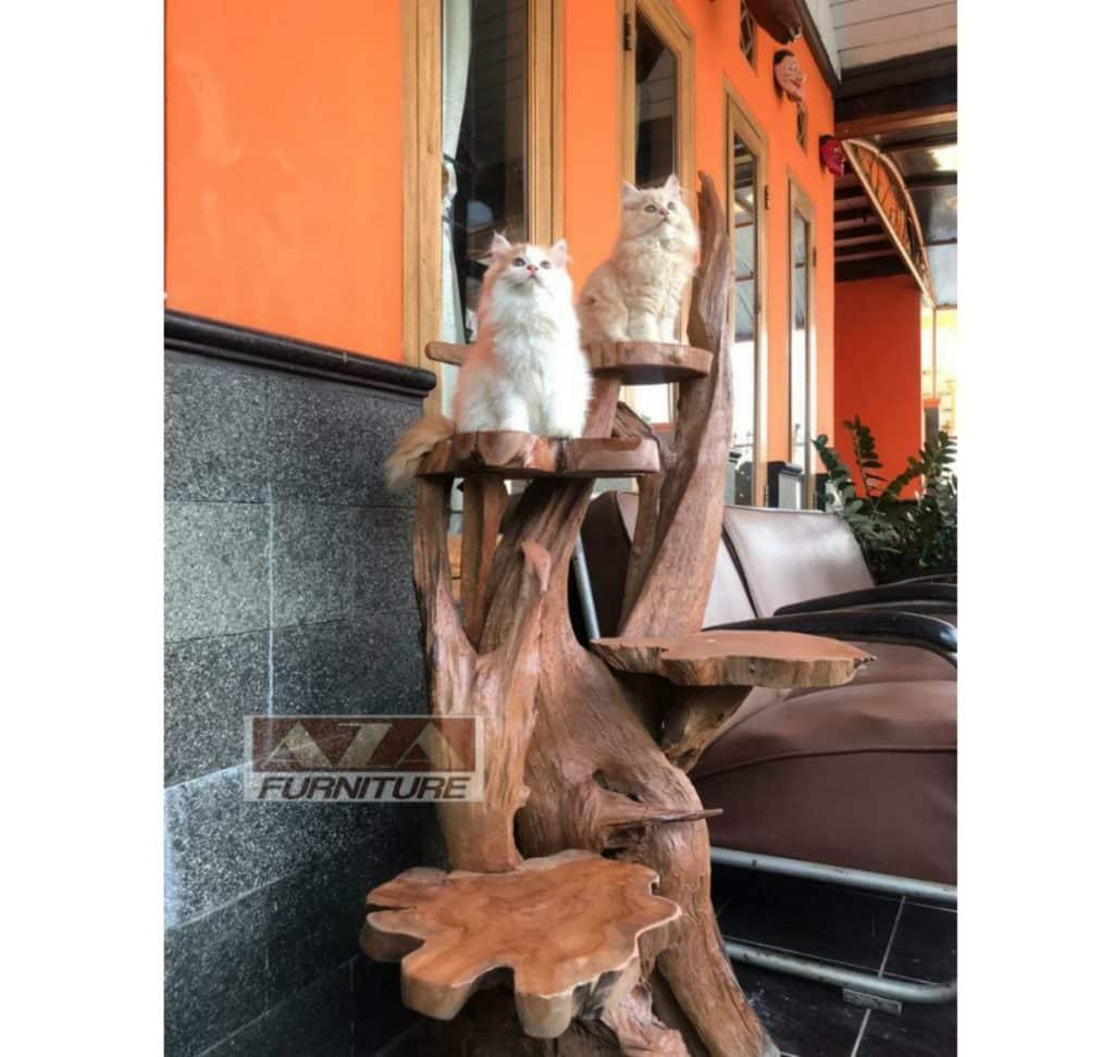 arbre a chat naturel teck