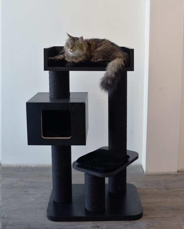 arbre a chat noir integral cube