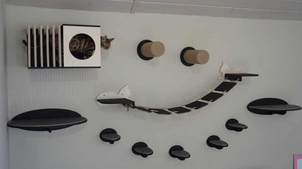 parcours mural etageres niche pont lattes griffoir